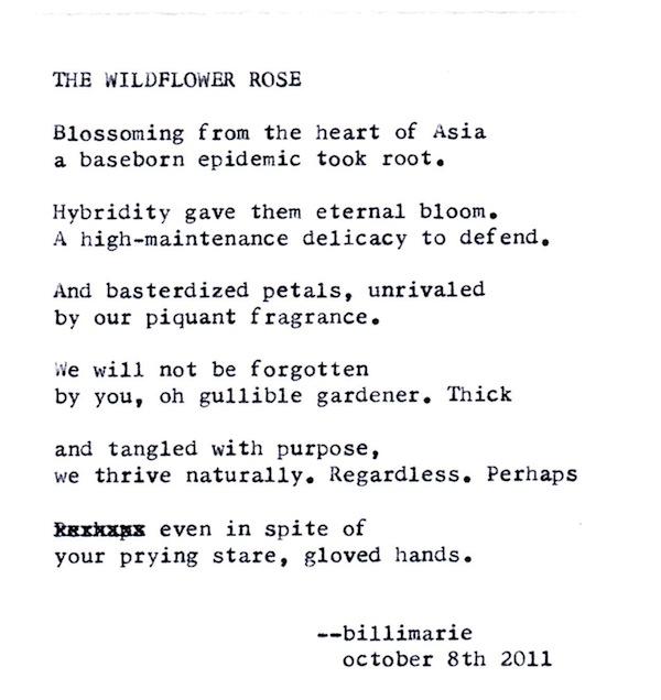Nature Typewriter Poetry